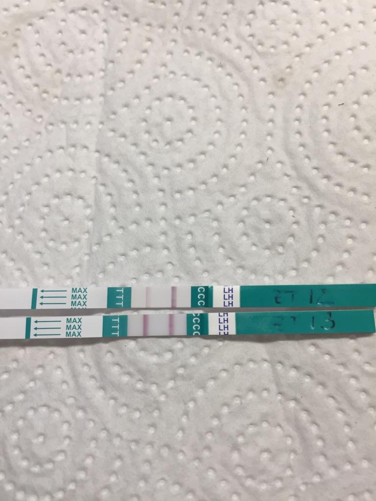 a7c64370-f05e-11e7-9f5e-2385b286f6cc.jpeg